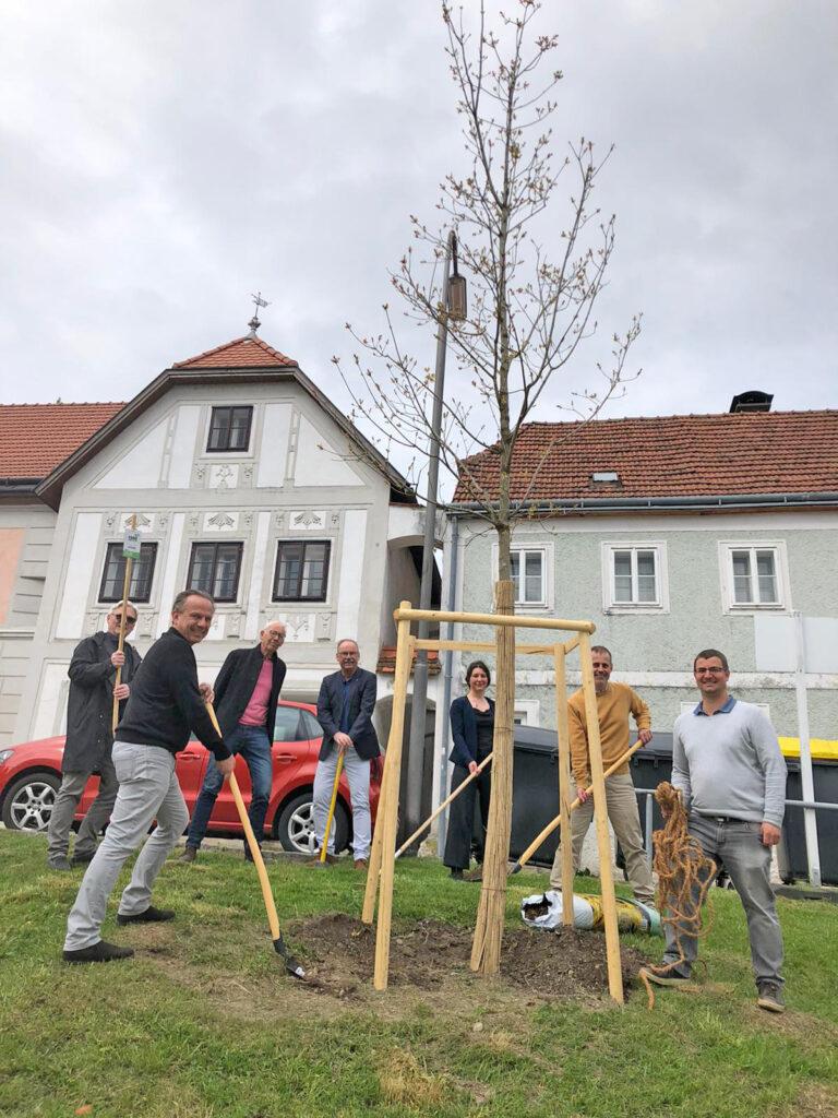 POPPE*PREHAL ARCHITEKTEN unterstützen1000 Bäume für Steyr